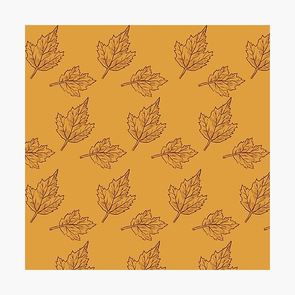 Fall Time Leaf Pattern Photographic Print