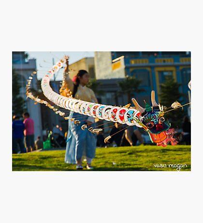 Spring Festival! Photographic Print