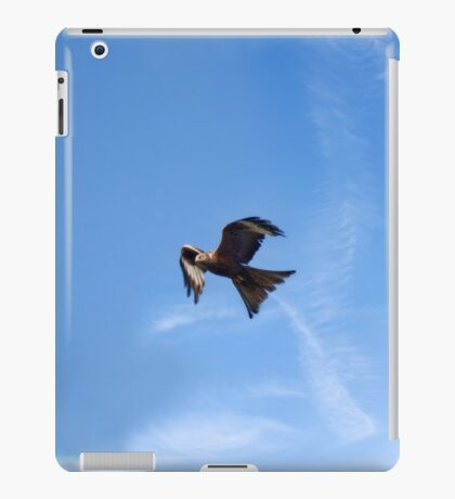 Of Kites and Chemtrails iPad Case/Skin