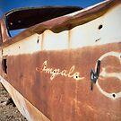Desert Impala by ponycargirl
