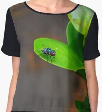 Fly on a Leaf Women's Chiffon Top