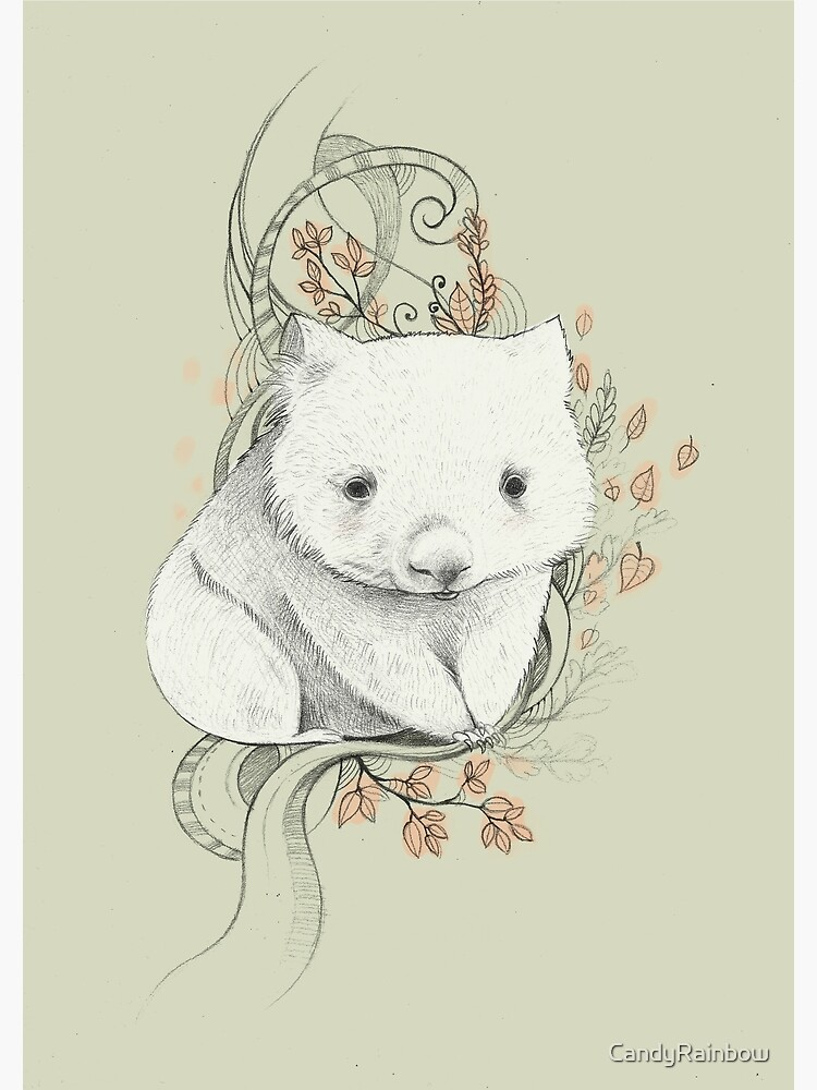 Wombat! by CandyRainbow