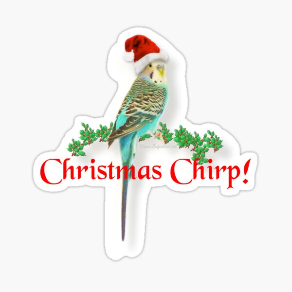 Christmas Budgie Sticker