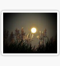 Moon Rise Sticker