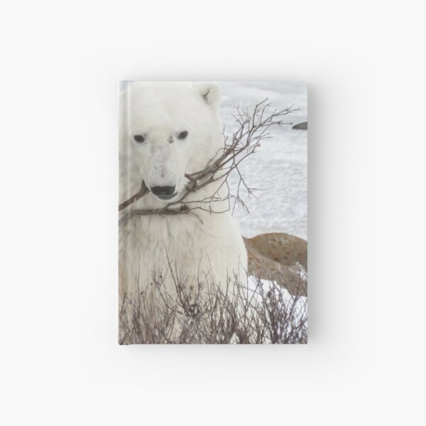 Boy, I'd like a real toy! Hardcover Journal