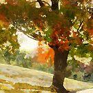 Autumn Shade by shutterbug2010