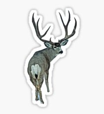 Massive mule deer buck Sticker