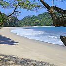Playa Cuatro Manuel Antonio National Park, Costa Rica by John Keates