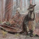 On the Wallaby Track Again. by Steve Campbell
