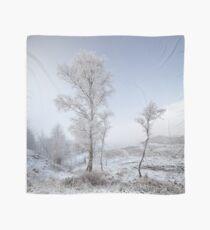 Glen Shiel Misty Winter Trees Scarf