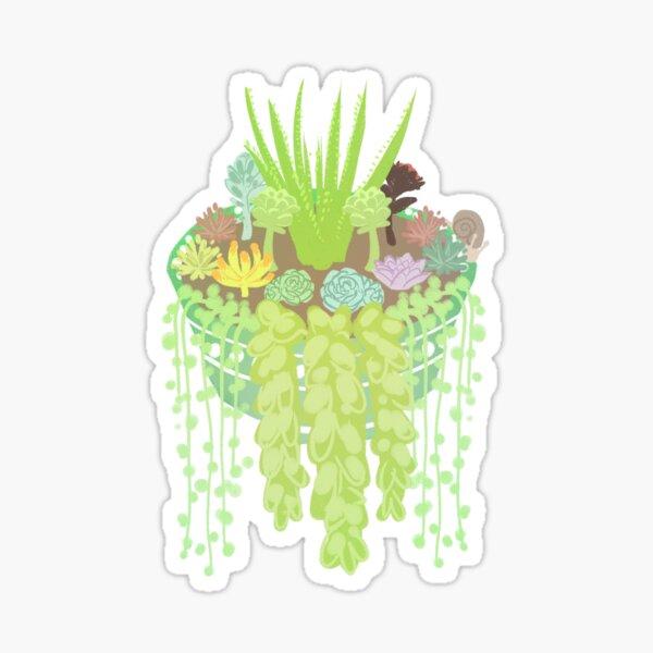Succulent Friends Sticker