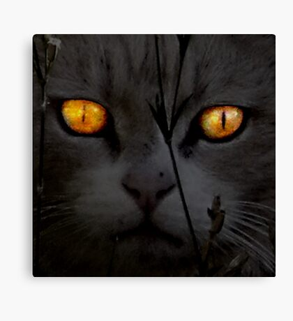 CC Night Falls (Death) Canvas Print