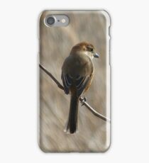 Poised for the Hunt iPhone Case/Skin