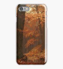 Silence In Misty Woods iPhone Case/Skin