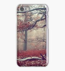 First Snow in Fall Woods iPhone Case/Skin