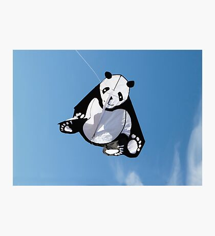 Panda in the Sky  Photographic Print