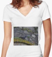 Jackdaw Women's Fitted V-Neck T-Shirt