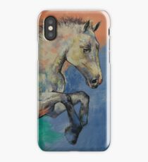Graceful Jets iPhone Case/Skin