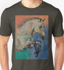 Graceful Jets T-Shirt