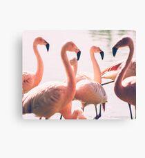 Pink Flamingo Flock Canvas Print