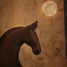 Wild Horse Moon by Lynn Starner