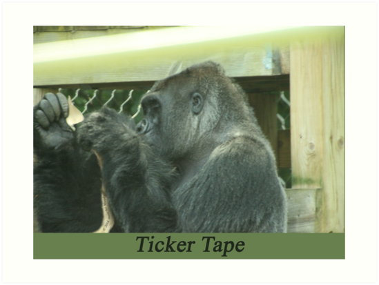 Ticker Tape by Thomas Murphy