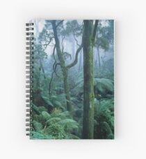 Winter Morning on Mount Dandenong Spiral Notebook