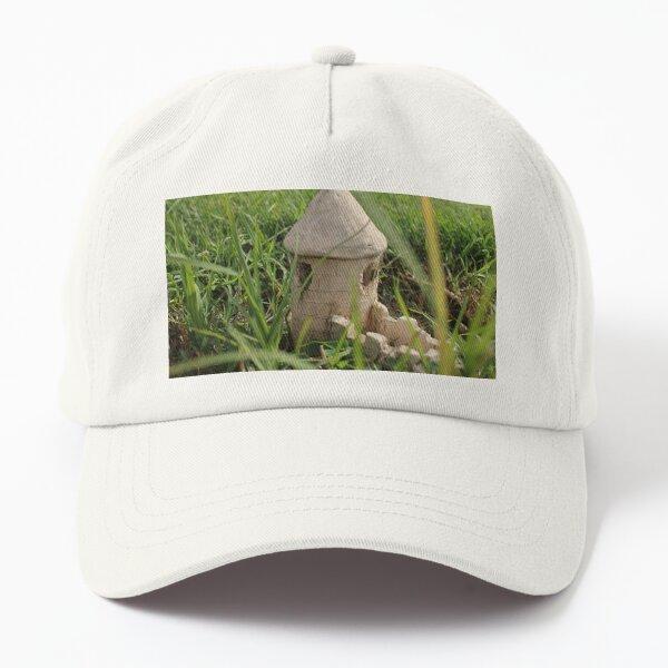 Abandoned castle Dad Hat