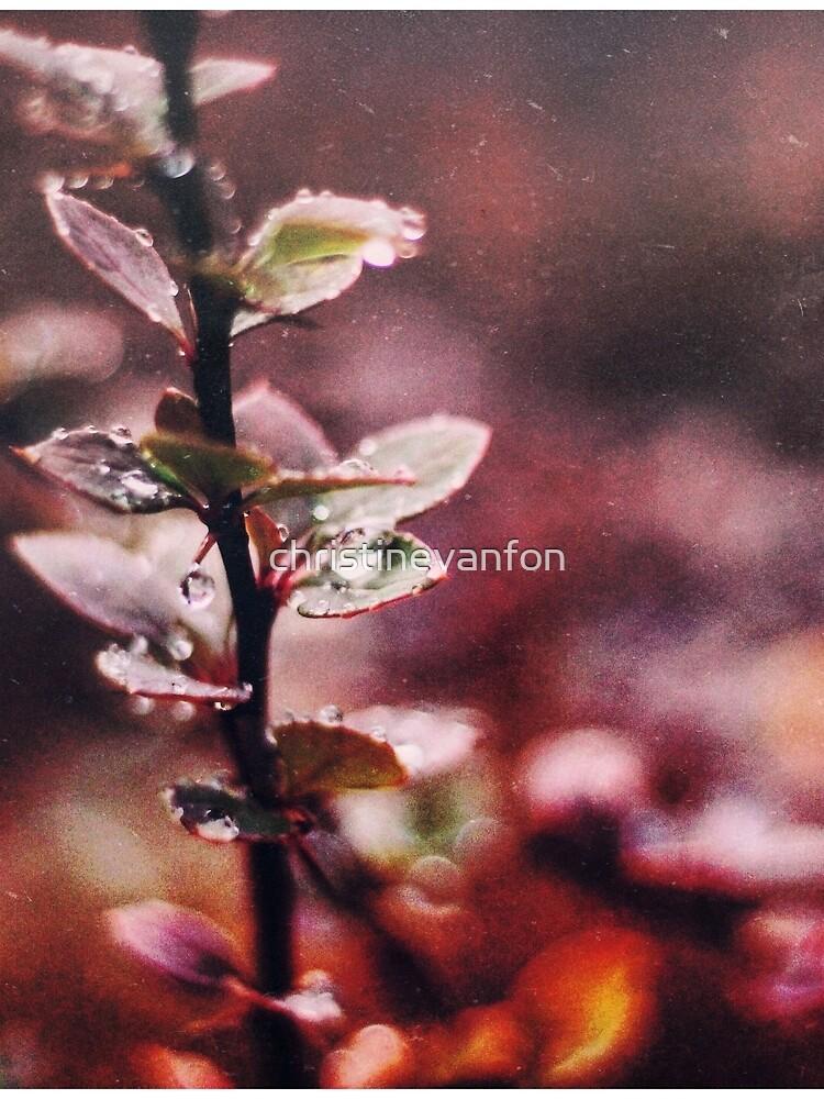 Enchanting  by christinevanfon