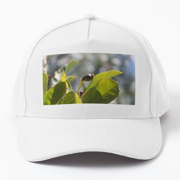 Baby lemon Baseball Cap