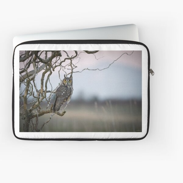 Hunting Imminent -- Long-eared Owl Laptop Sleeve