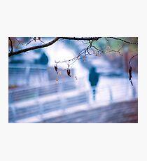 Pedestrian Photographic Print