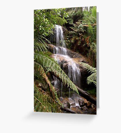 Ferntree falls Greeting Card