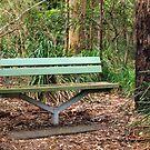 Bush Seat by W E NIXON  PHOTOGRAPHY