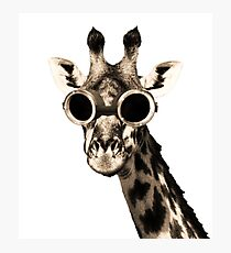 Giraffe With Steampunk Sunglasses Goggles Photographic Print