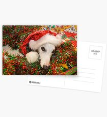 Christmas Whippet Postcards