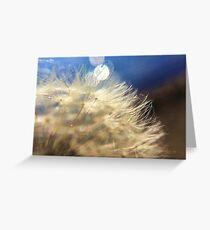 Dandelion Fuzz Greeting Card