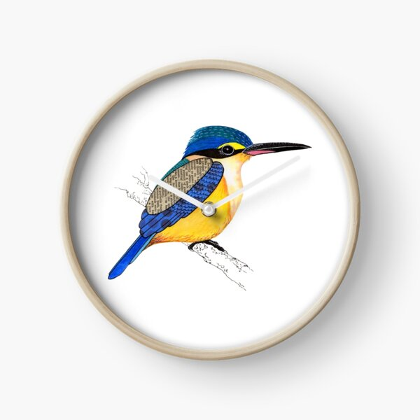 Sacred Kingfisher Clock