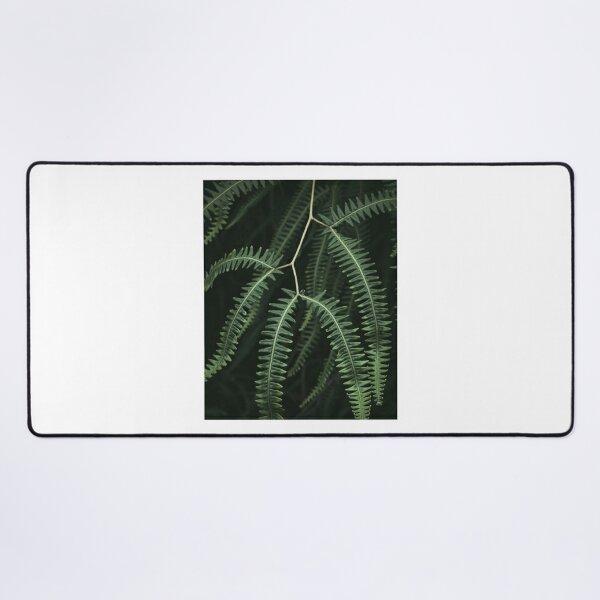 A jungle plant close up | Brazil Desk Mat