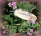 Feather Lite by Susan McKenzie Bergstrom