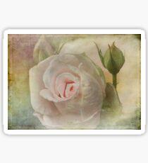 Tribute to a Rose Sticker