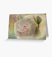 Tribute to a Rose Greeting Card