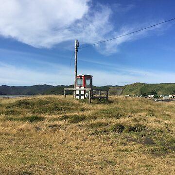 Te Maika telephone by benwallace13