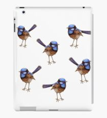 Blue Wrens, Russet and White iPad Case/Skin