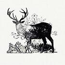 Oh Deer ! by kishART