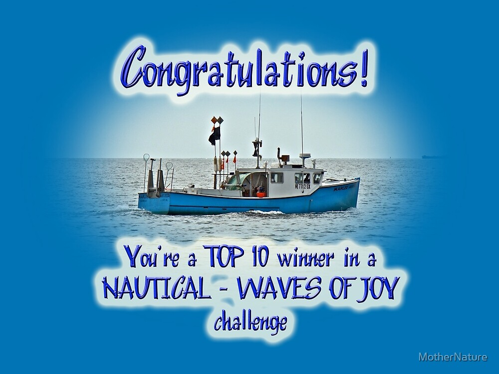 banner nautical challenge top10 - not for sale by MotherNature