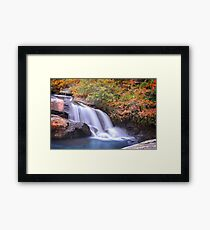 Ramsey Creek, South Carolina Framed Print