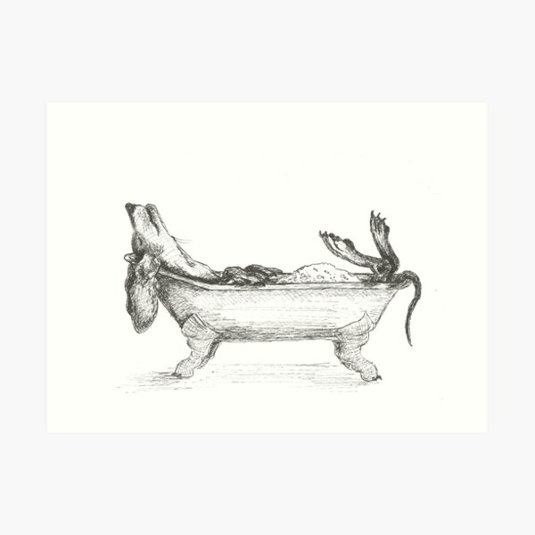 Dachshund in a bathtub illustration, pen and ink Art Print