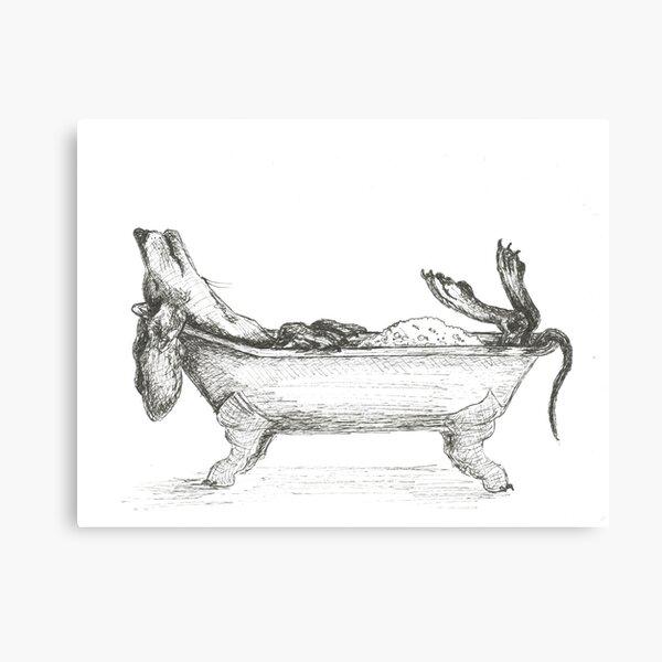 Dachshund in a bathtub illustration, pen and ink Canvas Print