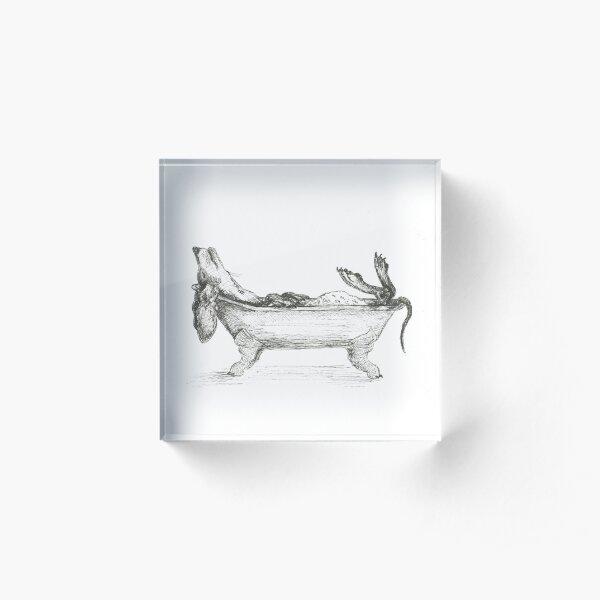 Dachshund in a bathtub illustration, pen and ink Acrylic Block